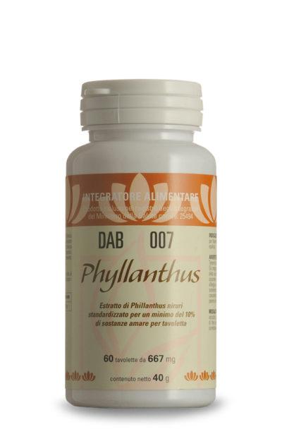 DAB 007 – Phyllanthus